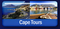 Cape Tours and Excursions